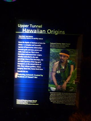 Hawaiian origins text